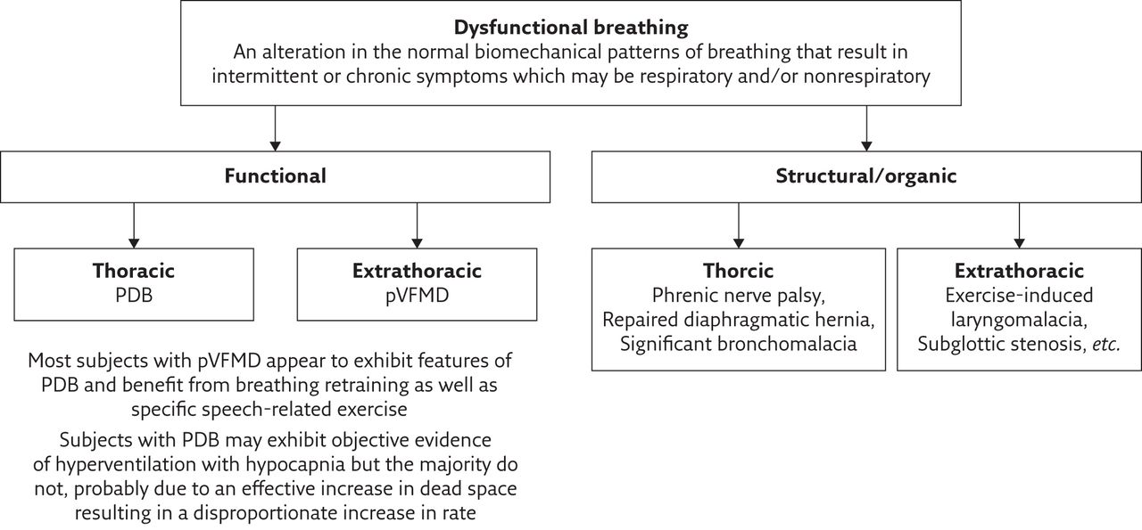 Dysfunctional Breathing And Reaching One S Physiological Limit As