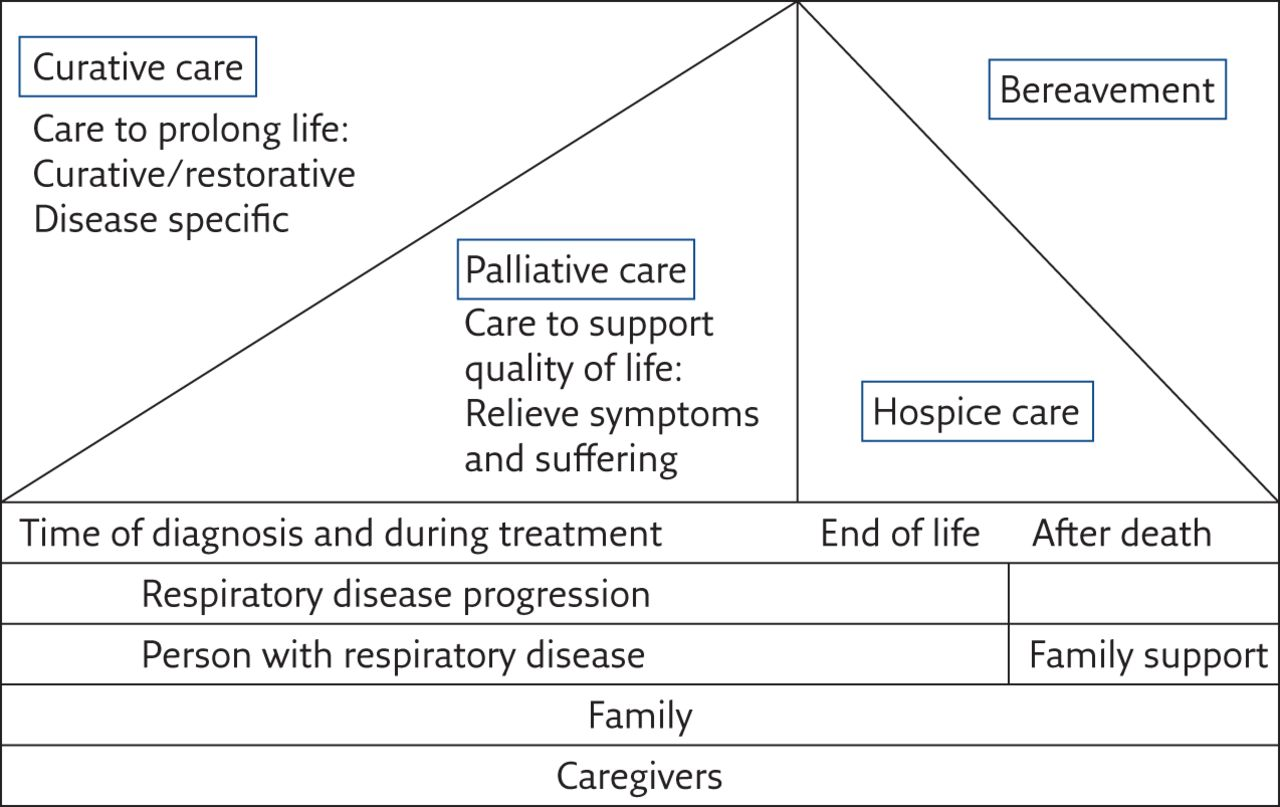 compassionate personcentered care for the dying an evidencebased palliative care guide for nurses