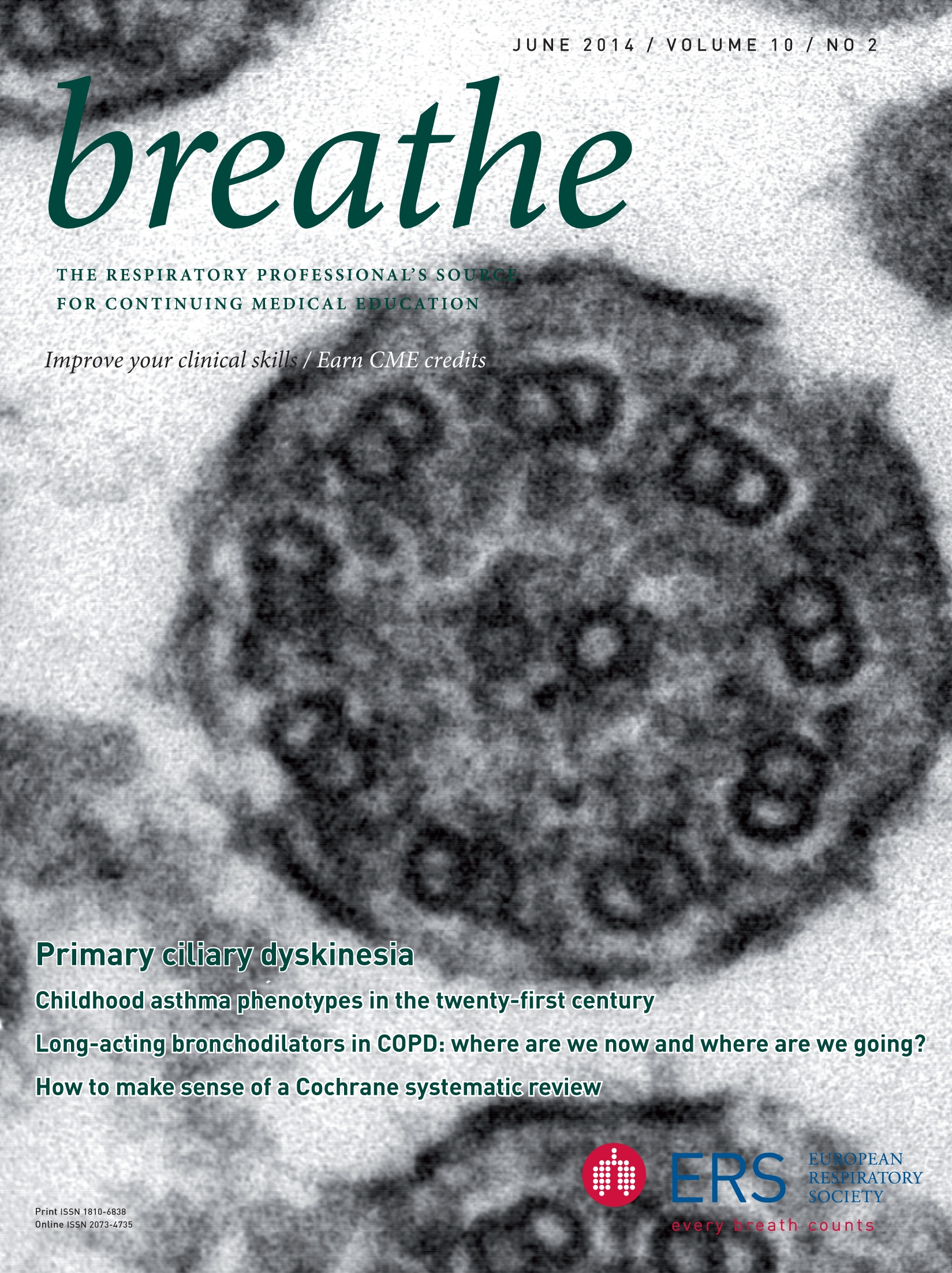 How to make sense of a Cochrane systematic review | European Respiratory Society